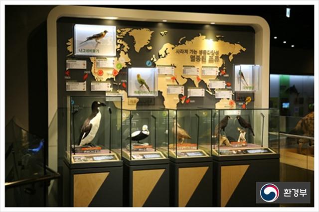멸종된 조류 보러 국립낙동강생물자원관으로 오세요!