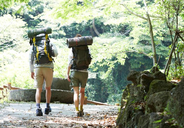 단풍, 안전한 산행 등 가을철 산행 이미지 배치