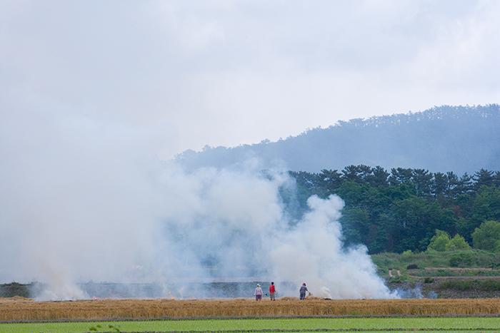 불법 소각으로 인한 연기 발생 이미지
