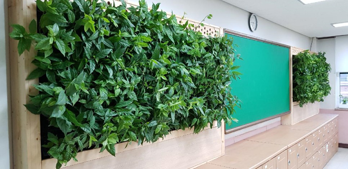 삼양초등학교_시범사업(5)